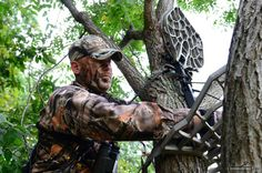Great article! Tree stand placement and morning vs evening locations.