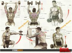 Exercises for Shoulders