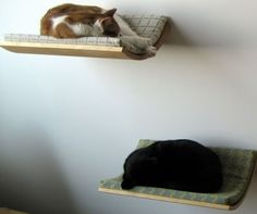 Curve Cat Bed: Designed by Akemi Tanaka, it's a minimalist comfortable bed for cats that can be fixed to the wall with ease.