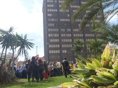 El Edificio Negro, edificio de las Delegaciones de la Junta de Andalucía desde Los Jardines de Picasso. Nuestro otro rascacielos pero con menos glamour que La Equitativa
