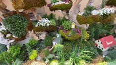 Hidden Mickey, Canal Boat, Disney Parks, Flower Designs, Disneyland, Flora, Plants, Plant, Disney Resorts