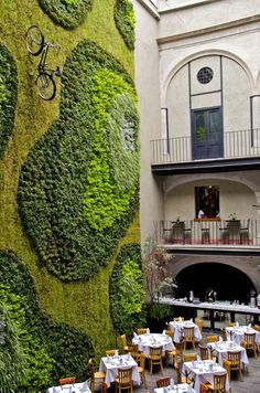 downtown-hotel-mexico-cafe.jpg 550×830 ピクセル
