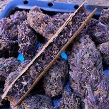 Buy top quality Cannabis Seeds from Seedsman. Our range of marijuana seeds is one of the largest online, with more than 3000 varieties of Cannabis Seeds. Buy Cannabis Online, Buy Weed Online, Online Buying, Purple Haze, Weed Shop, Vape Shop, Weed Pictures, Edibles Online, Marijuana Plants