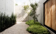 Located in Houston, United States, the Concrete Box House was constructed by Robertson Design, presenting a sculptural interpretation of concrete and wooden architecture. Wooden Architecture, Landscape Architecture, Landscape Design, Japanese Architecture, Concrete Wood, Concrete Design, Outdoor Landscaping, Outdoor Gardens, Beton Design