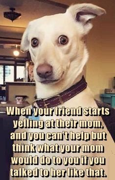 When your friend starts yelling at their mom, and you can't help but think what your mom would do to you if you talked to her like that.