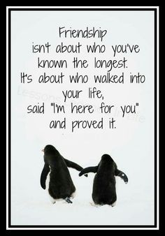 This is so true.My best friend, Samantha,  has proved over and over again that she really is the best. She's been around for 11 years and has done a lot more for me than others that have been around a lot longer. I love my Best Friend!