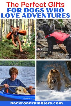 Your dog is part of the family, which means finding awesome gifts for dogs is important. We've rounded up a collection of our favorite dog gear, dog beads, dog packs, and yes, dog treats. Think of it as inspiration for your next dog-friendly adventure! Hiking Dogs, Camping And Hiking, First Aid For Dogs, Kayak For Beginners, Road Trip With Dog, First Time Camping, Kayaking Tips, Awesome Gifts, Dog Travel