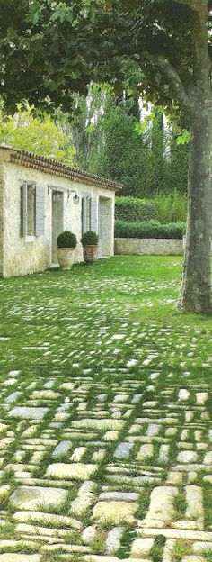 Côté Sud Dec 08-Jan 09, pavers with grass edited by lb for  linenandlavender.net, here:  http://www.linenandlavender.net/2009/08/and-livin-is-easy.html