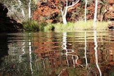 KARIJINI NATIONAL PARK, WA: Dales Gorge, in Karijini National Park, represents the pure essence of Australia, remote, rugged, diverse and incredibly beautiful. Our visit left us with never-to-be-forgotten memories. Picture: Carole Dunn, NSW
