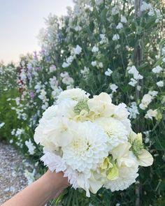 """1976 gilla-markeringar, 213 kommentarer - Jessica Hedin 🌿 Ängadalen (@angadalen) på Instagram: """"Här bjuder jag på ett luktärtsinlägg! Vilken blomsterprakt vi haft denna sommar! Fullständigt…"""" Floral Wreath, Wreaths, Flowers, Instagram, Decor, Pictures, Floral Crown, Decoration, Door Wreaths"""