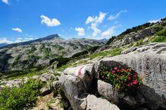 Oben am Ifen erstreckt sich das Gottesackerplateau und bietet eine sehenswerte Landschaft. #kleinwalsertal #visitvorarlberg Earth, Mountains, Nature, Travel, Outdoor, Beautiful, Photos, Alps, Photographers
