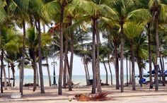 Photos by Maiju: Bangsaen beach
