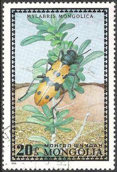 Mongolia, 1972, Mylabris mongolica