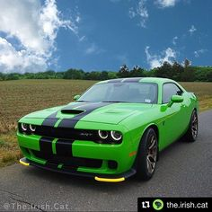 If you haven't checked out @the.irish.cat page go take a look. I LOVE this shade of green!! You have to be snapping necks when you're out rolling!! ➿➿➿➿➿➿➿➿➿➿➿➿➿➿➿➿ • . • . • . • #thebeast #thatsmydodge #dodge #challenger #srt #streetfighter #challengerhellcat #hellcat #mopar #legendaryrides #americanmuscle #carlifestyle #noisepollution #fastintentions #srthellcat #supercharged #drivesrt #musclecars #plumcrazy #srtfam #moparnation #musclecarshowcase #srtlife #srtaddicts #moparmafia…