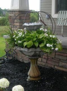 birdbath with hostas, fern, geraniums