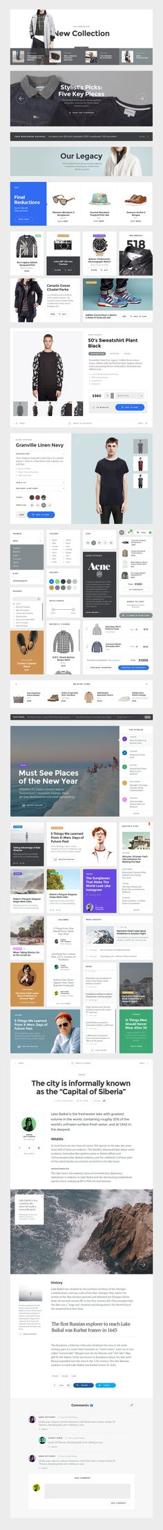 Baikal_preview_components in Website Design