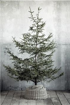 bb posted Pretty natural Christmas tree and wicker tree skirt to their -christmas xmas ideas- postboard via the Juxtapost bookmarklet. Merry Little Christmas, Noel Christmas, Country Christmas, Simple Christmas, Christmas Greetings, Winter Christmas, All Things Christmas, Vintage Christmas, Minimalist Christmas Tree