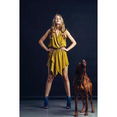 #sandorthevizsla howlin' in the studio with @frida_melh / @iconic_mgmt  #models #photography #style #beauty #modeling #woman #women #inspiration #dress #photographer #fashion #model #instagood #photooftheday #iconic_mgmt #lanvin #ss16 #vizslasofinstagram #vizsla