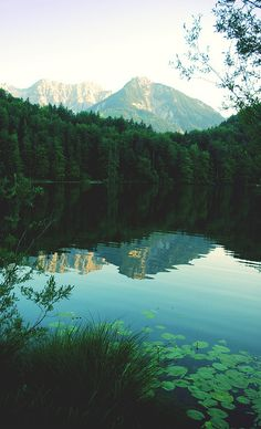 Moody Nature — isatoutside: Germany, Alatsee by Beautiful World, Beautiful Places, Beautiful Pictures, Landscape Photography, Nature Photography, Travel Photography, To Infinity And Beyond, Adventure Is Out There, Beautiful Landscapes