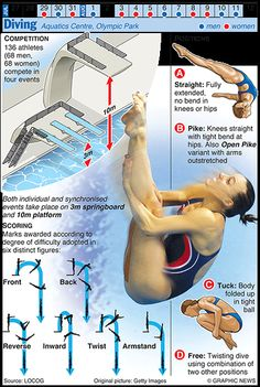 The Graphic News guide to each sport in the Olympics, from canoeing, through diving and swimming to water polo Women's Diving, Best Scuba Diving, Swimming Diving, Diving Helmet, Synchronized Swimming, Trampolines, Olympic Gymnastics, Olympic Sports, Olympic Games