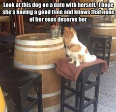 Funny Pictures Daily Dose , http://photovide.com/funny-pictures-25092016/
