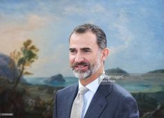 King Felipe VI of Spain attends several audiences at Zarzuela Palace on October 14, 2016 in Madrid, Spain.