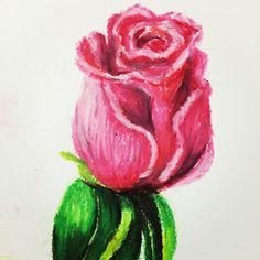 Pink Rose in oil pastels