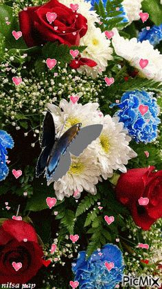 Foto animada Beautiful Gif, Beautiful Roses, Beautiful Pictures, Butterfly Gif, Butterfly Wallpaper, Beautiful Butterflies, Pretty Flowers, My Flower, Flower Power
