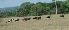Post Oak Endurance Ride
