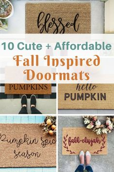 10 cute + affordable