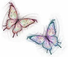 Image result for Animated Butterfly Graphics