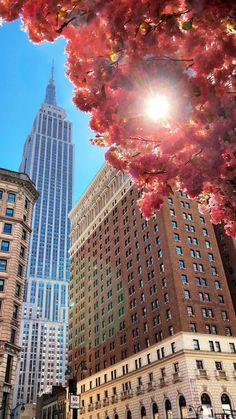 New York – Ferdi Susler – Join the world of pin Photographie New York, Travel Photographie, Empire State Building, New York City, New York Photography, Manhattan New York, Brooklyn New York, Usa Tumblr, City Aesthetic