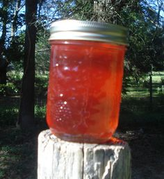 Mayhaw Jelly, Lavinia's favorite jelly, especially on homemade biscuits with melted butter