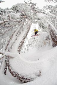Ski - really cool shot!