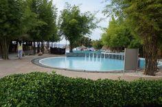 Kiddie pool..