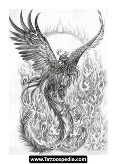 Phoenix Tattoo Designs | Phoenix%20Tattoo%20Meaning 20 Phoenix Tattoo Design Idea Meaning 20