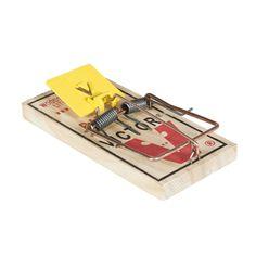 13 Best Rat Traps Images Rat Traps Mouse Traps Rats