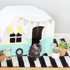 DIY cat camper   A cute cat house to make   cat crafts | Pet crafts |