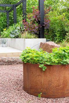 Hemma hos familjen Westerlund har trädgården delats in i fle Deck With Pergola, Diy Pergola, Garden Awning, Corten Steel Planters, Strawberry Planters, Outside Room, Dream Garden, Garden Inspiration, Outdoor Gardens