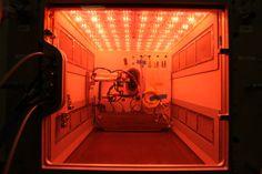 Prototype of Space Stations Advanced Plant Habitat via...