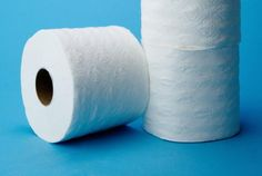What Did People Use Before Toilet Paper?   Mental Floss