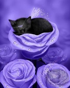 Items similar to SALE Black Cat Art Print // Sleeping Kitten // Lilac Daydreams - on Etsy Purple Love, All Things Purple, Purple Stuff, Purple Bed, Periwinkle, Crazy Cat Lady, Crazy Cats, I Love Cats, Cute Cats