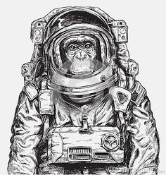 hand-drawn-monkey-astronaut-vector-77167830.jpg (400×421)