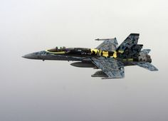 An F/A-18C Hornet assigned to Strike Fighter Squadron (VFA-113).  That 's the way we roll. Go Navy!!