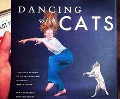 Dancing With Cats Book - https://tiwib.co/dancing-cats-book/ #Books+Reading #gifts #giftideas #2017giftideas #xmas