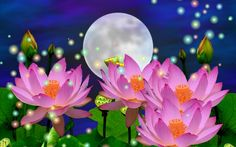 Nature wallpaper - Flores, Rosybrown | Fondo de pantalla gratis hd ...