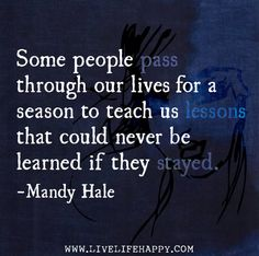 Some people pass through our lives for a season to teach us lessons that could never be learned if they stayed. -Mandy Hale