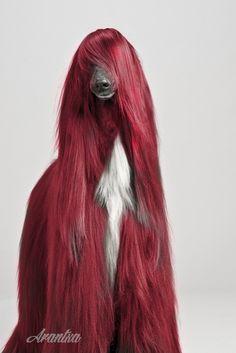 DIY dog hair