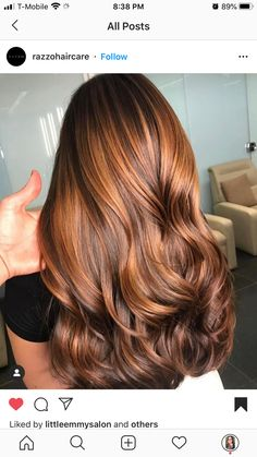 Copper Highlights On Brown Hair, Copper Brown Hair, Copper Balayage, Honey Brown Hair, Hair Highlights, Balayage Hair, Carmel Balayage, Auburn Balayage, Caramel Highlights
