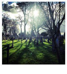 Long shadows, Glasnevin Cemetery.